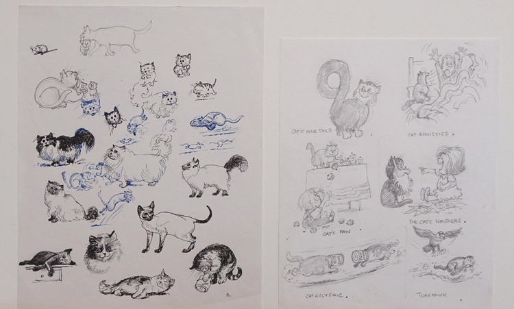 Sketches of cats - Cat O' nine tails and others © Norman Thelwell